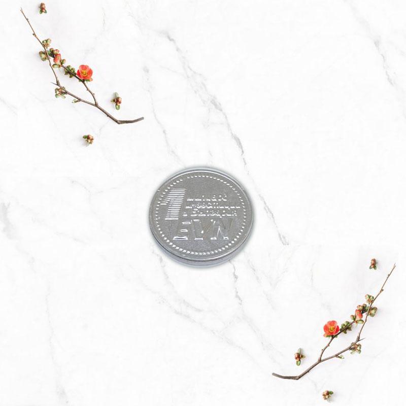EVN-chocolate-coins